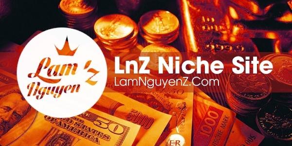 lnz niche site banner